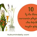 10 lý do dùng curcumin phytosome cho bệnh tuyến giáp